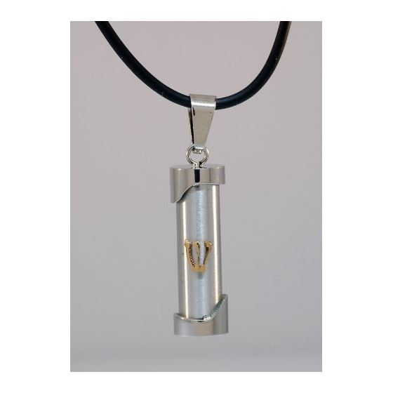 Stainless Steel Two Tone Plated Torah Jewish Pendant 1